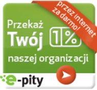 Program do rozliczania PIT 2014 online - e-pity 2013